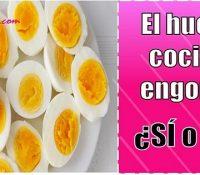 el huevo cocido engorda