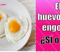 el huevo frito engorda mucho