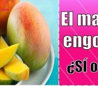 el mango engorda mucho