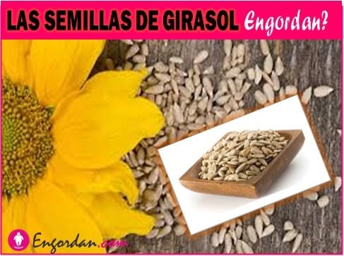 las semillas de girasol engordan o adelgazan
