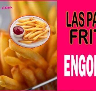 Las patatas fritas engordan